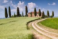 Tuscan Classic Fine Art Print