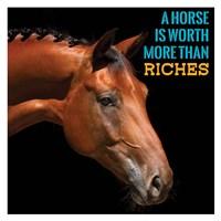 Horse Quote 6 Fine Art Print