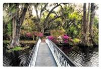 The Garden Bridge Fine Art Print