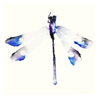 Blue & Violet Dragonfly Fine Art Print