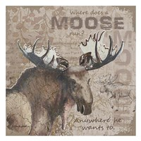 Where Does a Moose Run Framed Print
