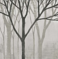Spring Trees Greystone II Fine Art Print