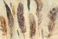 Feather Study Fine Art Print