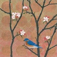 Cherry Blossoms I Fine Art Print