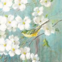 Spring Dream VI Framed Print