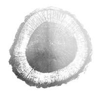 Silver Foil Tree Ring II - Metallic Foil Framed Print