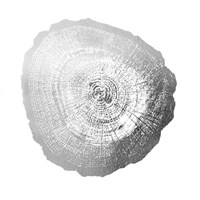 Silver Foil Tree Ring IV - Metallic Foil Fine Art Print