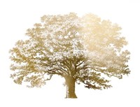 Gold Foil Elephant Tree - Metallic Foil Fine Art Print