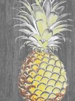 Vibrant Pineapple Splendor II Framed Print