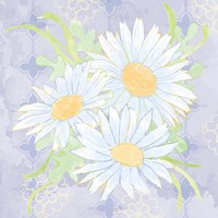 Daisy Patch Serenity II Framed Print