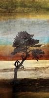 Fall Colors II Fine Art Print