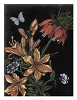 Dark Floral II Framed Print