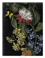 Dark Floral III Framed Print