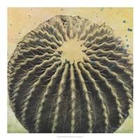 Desert Dreams III Framed Print