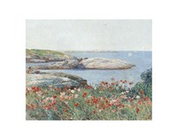 Poppies, Isles of Shoals, 1891 Fine Art Print