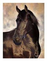 TBD (black horse) Fine Art Print