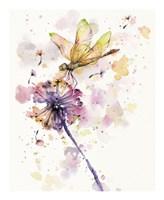 Dragonfly & Dandelion Fine Art Print