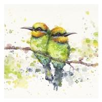 Family (Rainbow Bee Eaters) Fine Art Print