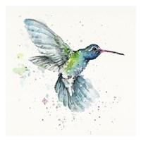 Hummingbird Flurry Fine Art Print