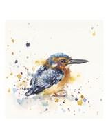 Kingfisher Lane Fine Art Print
