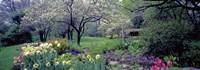 Country garden, Old Westbury Gardens, Long Island Fine Art Print