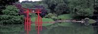 Japanese Garden Fine Art Print
