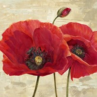 Red Poppies (detail II) Fine Art Print