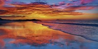 Sunset, North Island, New Zealand Fine Art Print