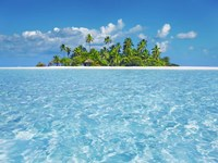 Tropical Lagoon with Palm Island, Maldives Fine Art Print