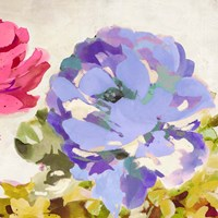 Colorful Jewels II Framed Print