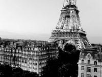 Eiffel Tower and Buildings, Paris Fine Art Print