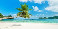 Tropical Beach, Seychelles Fine Art Print