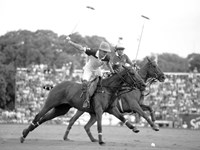 Polo Players, Argentina Framed Print