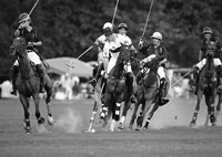Polo players, New York Fine Art Print