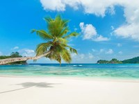 Tropical beach, Seychelles (detail) Fine Art Print