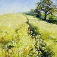Fields of Gold Fine Art Print