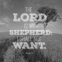 Psalm 23 The Lord is My Shepherd - Field Fine Art Print