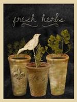 Fresh Herbs Fine Art Print