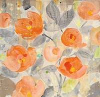 Poppy Garden I Framed Print