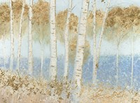 Summer Birches Fine Art Print