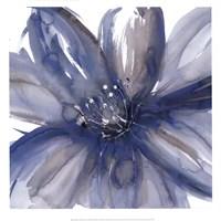 Blue Beauty I Framed Print