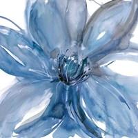Blue Beauty II Fine Art Print