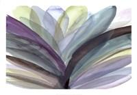 Blooming Glory Fine Art Print