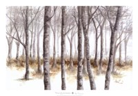 At Peace Fine Art Print