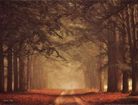 Misty Walk Fine Art Print