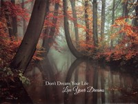 Live Your Dream Fine Art Print