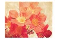 Sun Fire Florals Fine Art Print