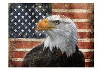 Eagle and Flag Fine Art Print