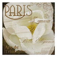 Magnolia Paris Framed Print