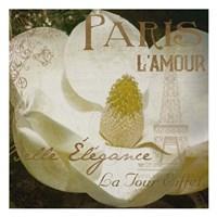Magnolia Paris Mate Framed Print